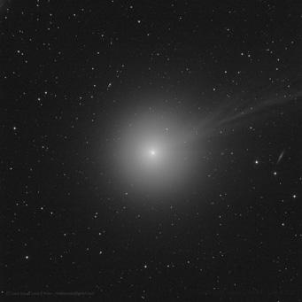 Cometa C2014-Q2 LoveJoy